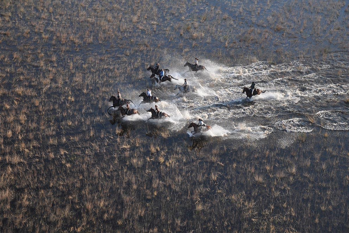 African Horseback Safaris, BotswanaReisekonzept