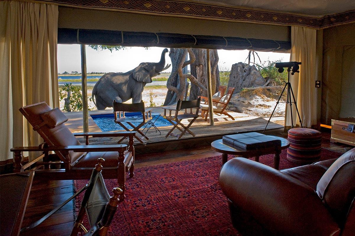Zarafa_Camp_Botswana_RoomReisekonzept